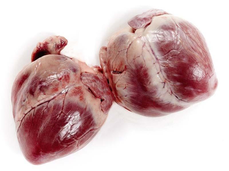Corazón de cerdo celta